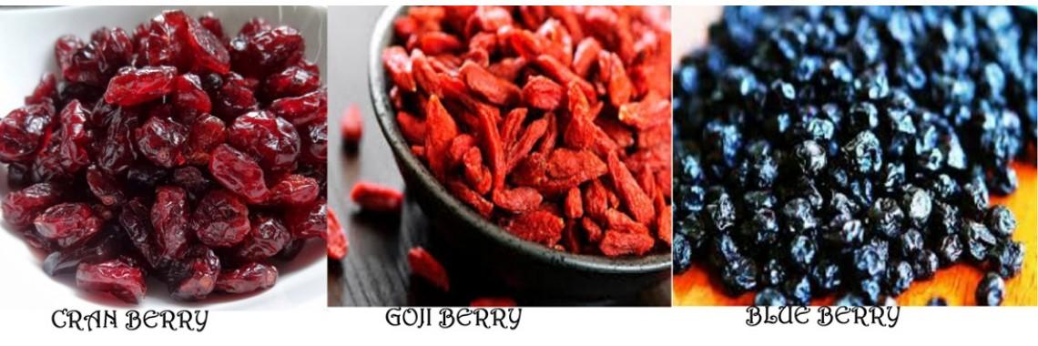 gojicranblue berry