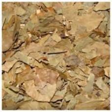 Abacateiro Folhas (100 g Granel)